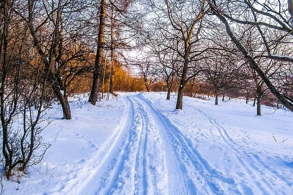 Powiedz-mi-jak-wygladaly-Twoje-treningi-zima-a_article.jpg